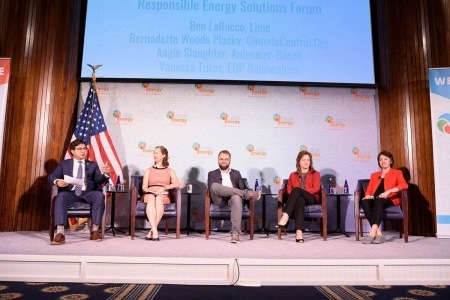 Clean Energy in the Mainstream Panel